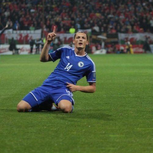 Bosna i Hercegovina – Svi golovi u kvalifikacijama za Euro 2016