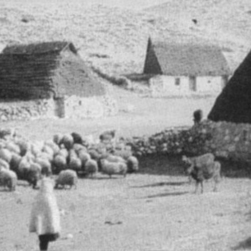 Naseljavanje Vlaha i Arbanasa u Bosni: Preseljavanje Vlaha iz Hercegovine