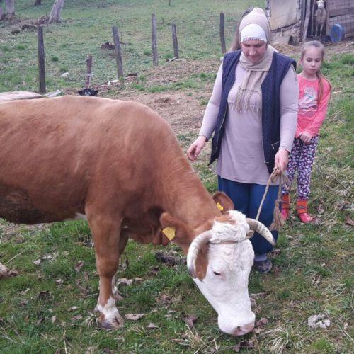 Senija Selimović iz Zvornika za Osmi mart dobila kravu