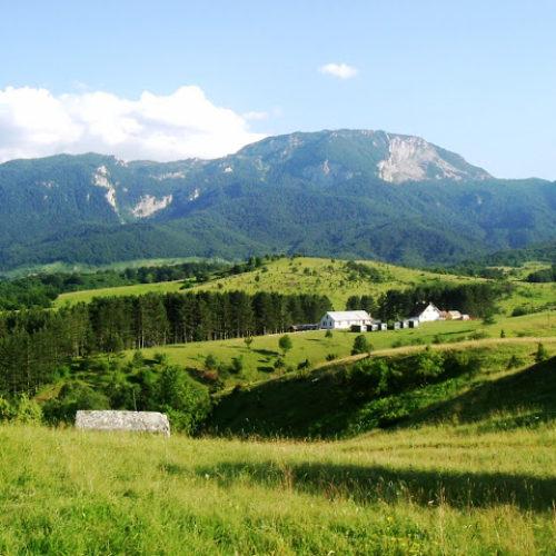 Park prirode – Husremovac (FOTO)