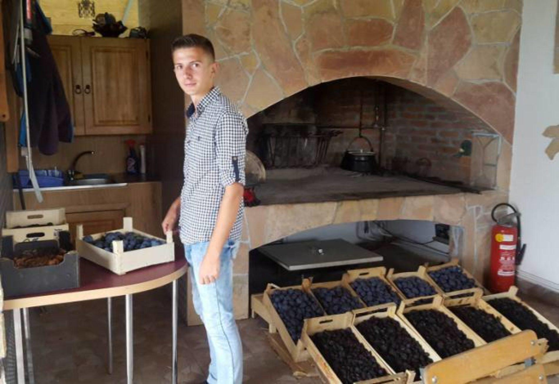Ima posla u Bosni – Mladić iz Zavidovića suši voće: Od sušenja šljive dobro se zarađuje