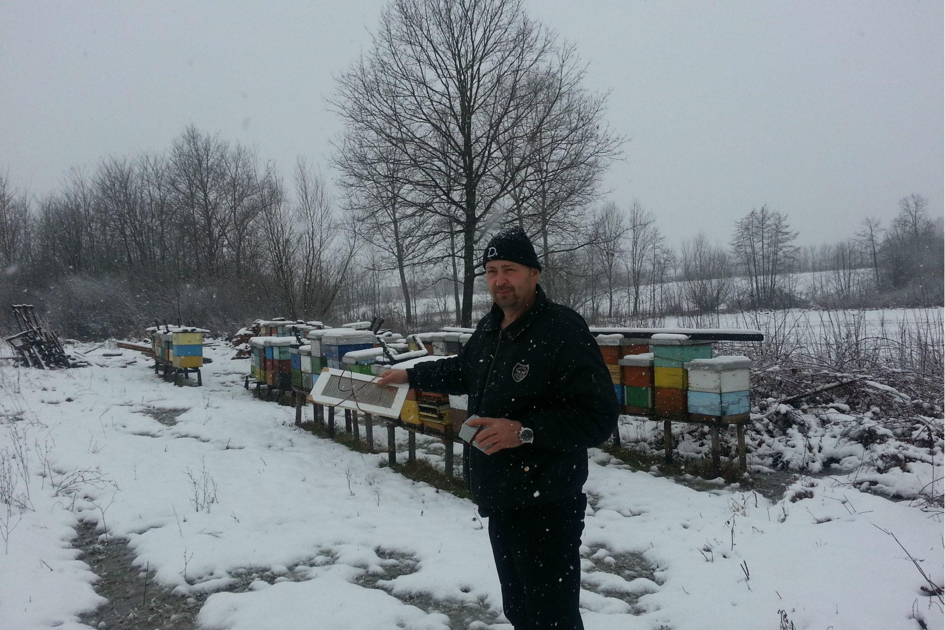 Jedini u BiH: Sulejman Jakupović proizveo kilogram pčelinjeg otrova, gram košta 50 do 70 dolara