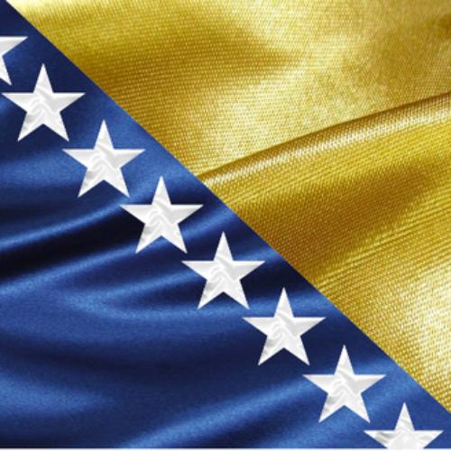 70 godina od donošenja prvog ustava Bosne i Hercegovine