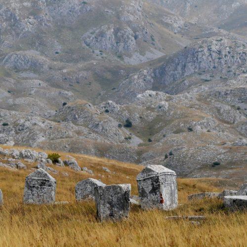 Stanovnici srednjovjekovne bosanske države