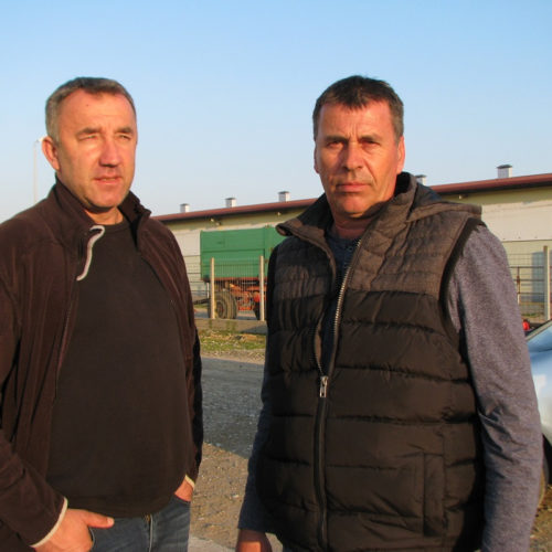 Složni Grgići proizvode juneće meso za pola Bosne
