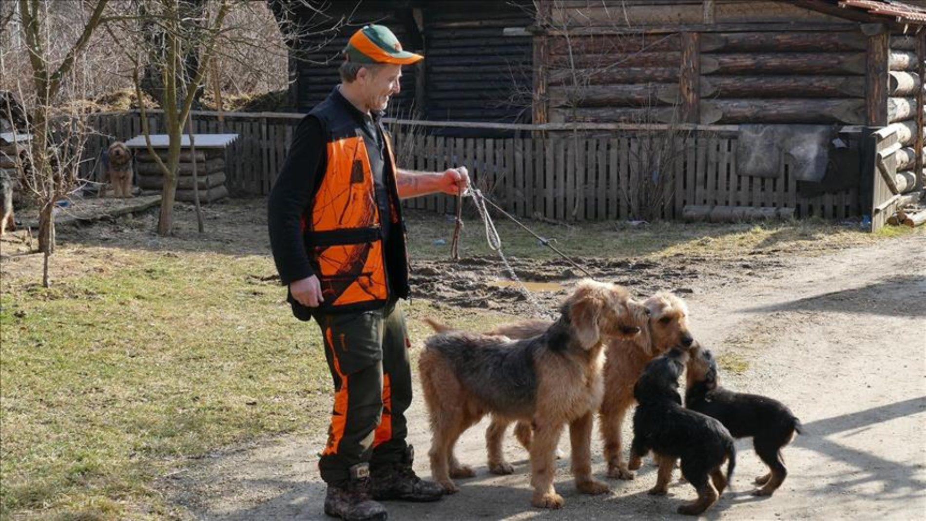 Mirhad Džaferagić poklanja bosanske autohtone lovačke goniče i promoviše Bosnu i Hercegovinu širom svijeta