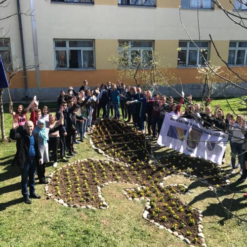 Cvijetni ljiljan od 9 metara ukrasio školsko dvorište u Tojšićima