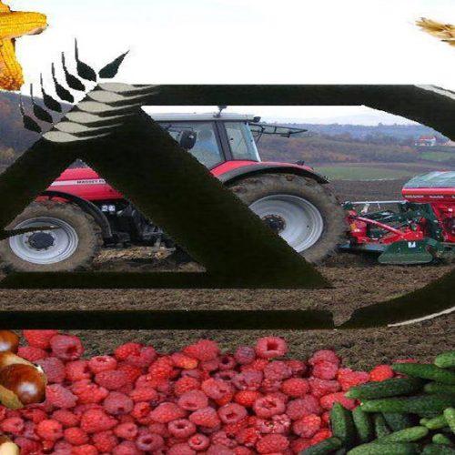 Firme Agrodar i Poljosementi do sada investirale oko 10 miliona KM u nove proizvodne pogone u Bihaću