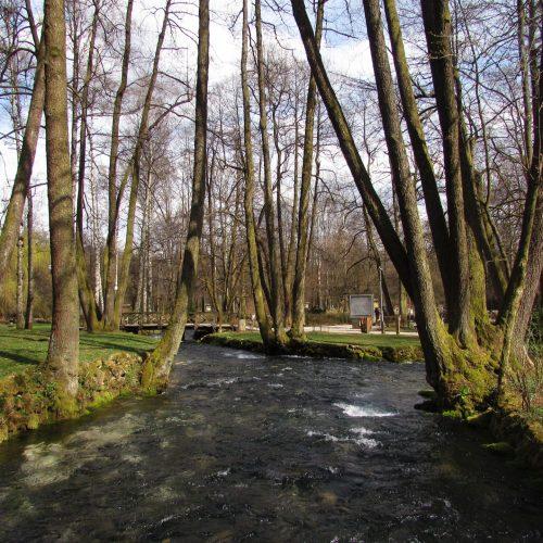 Vrelo Bosne (Foto/Video)