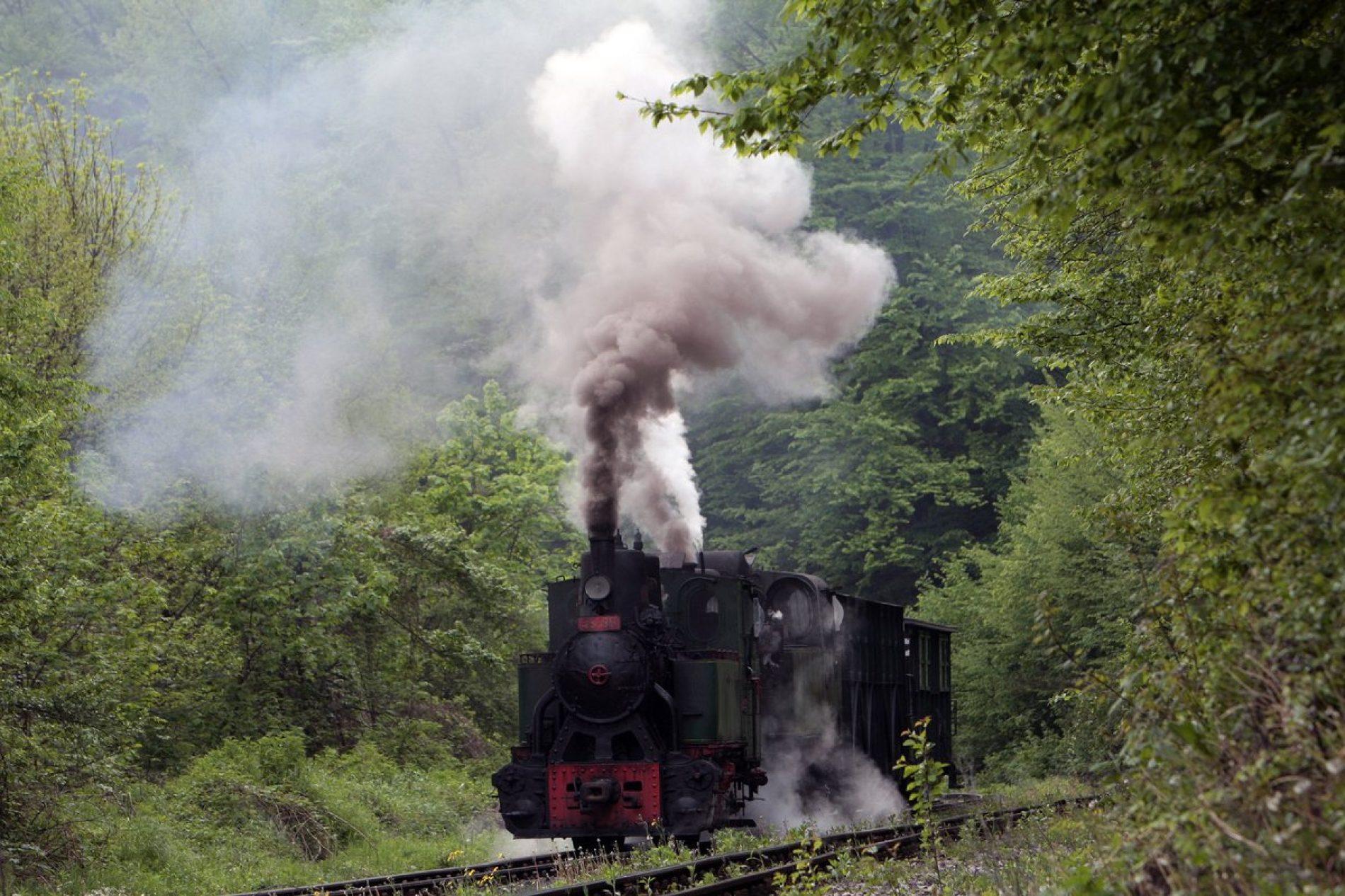 Banovići: Parne lokomotive privlače veliki broj turista