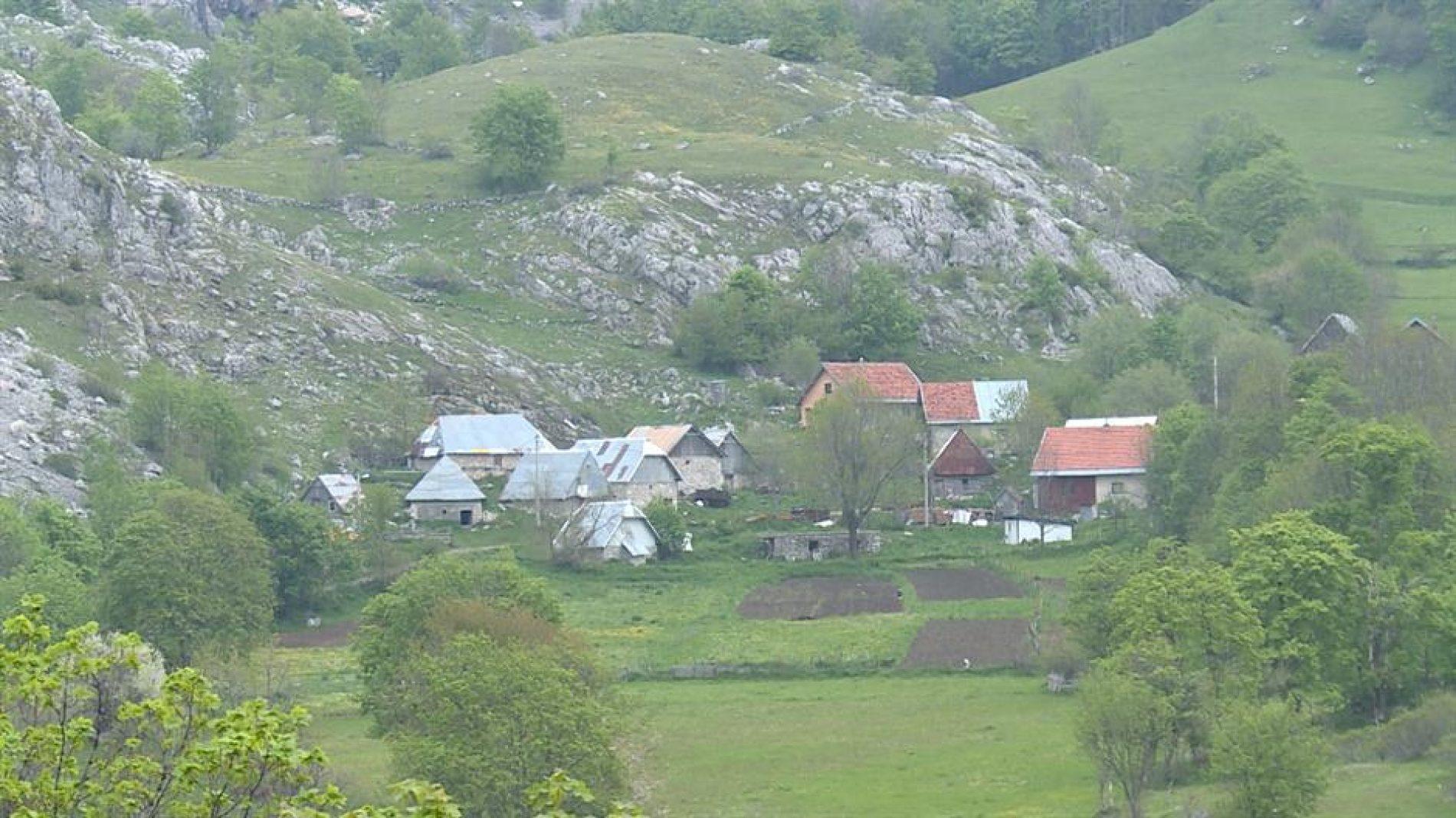 Gradski život zamijenili seoskim: Uspješan biznis porodice Fatić u Umoljanima