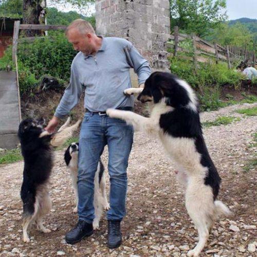 Enver Hamzić, gazda na svojoj zemlji: Vozi moderan džip terenac; ima 120 koza, voćnjak sa 1300 stabala šljive i jabuke