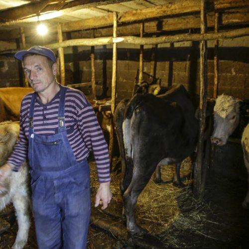 Povratnička porodica Herceglija iz Rogatice: Uprkos napadima na imovinu ostajemo ovdje
