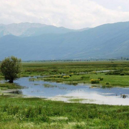 Prirodna bogatstva Bosne i Hercegovine – Livanjsko polje