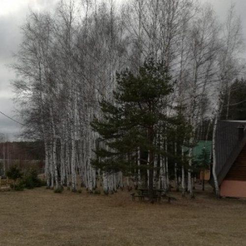 Zimska tišina u selima iznad rudarske Breze (FOTO)