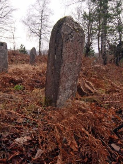 Započela arheološka istraživanja najstarijeg muslimanskog mezarja u Bosni i Hercegovini