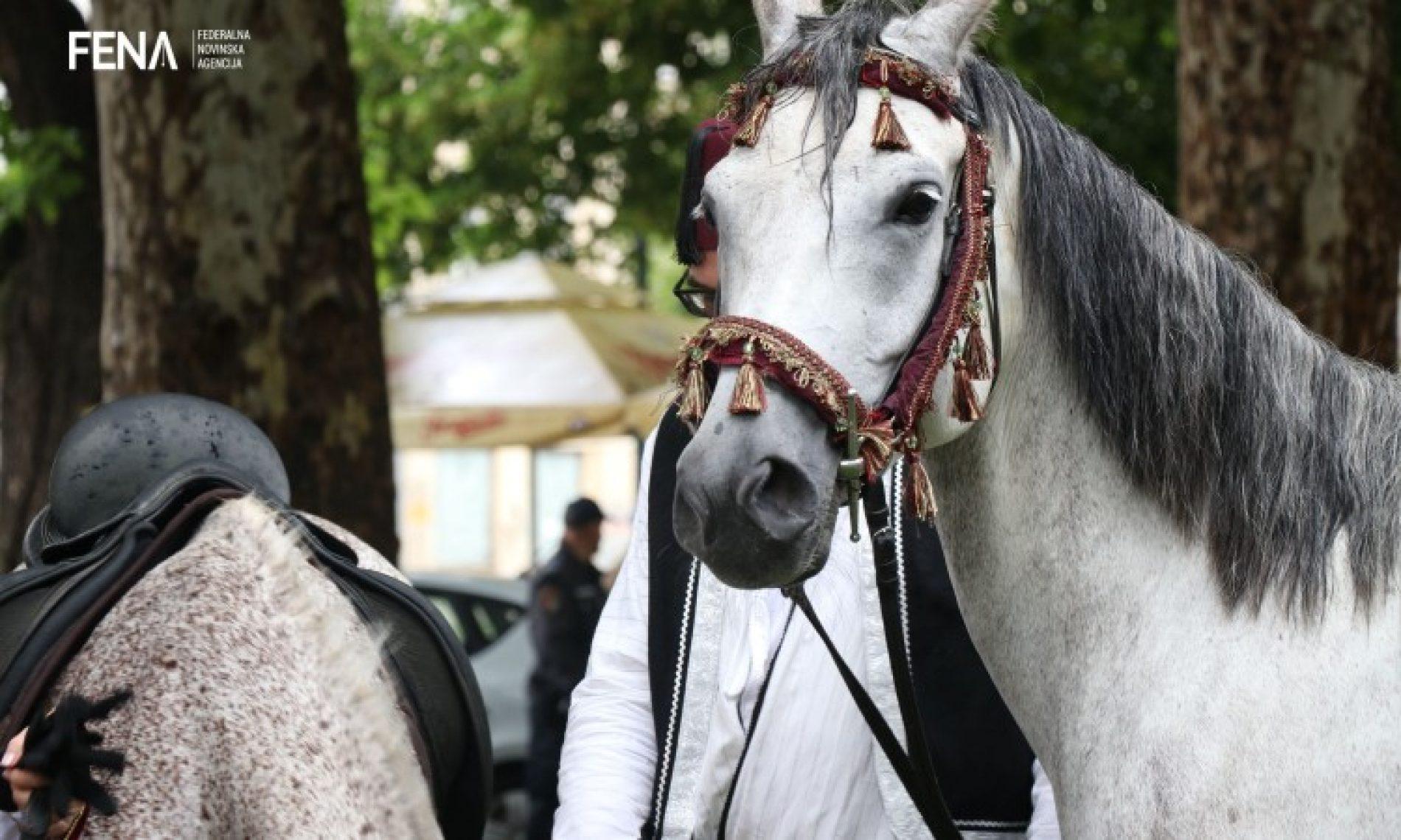 Konjanici krenuli iz Sarajeva na 508. Dane Ajvatovice (VIDEO)