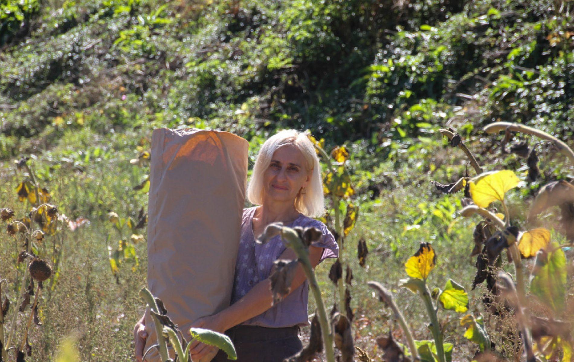 Pionirski koraci Lejle Karović-Kersting na zapuštenim podrinjskim poljima