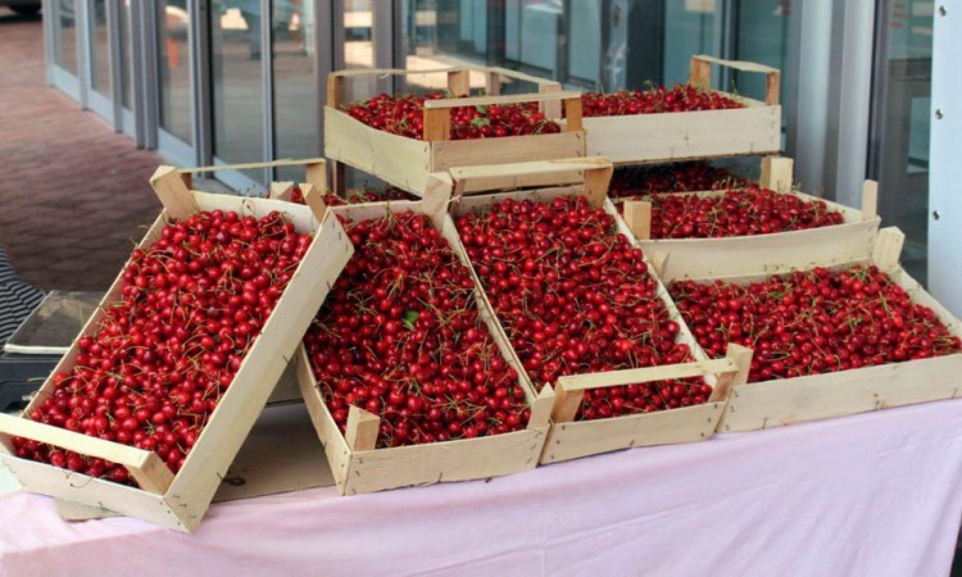 Voće i povrće iz Mostara izvoze u svijet. Godišnja proizvodnja oko dva miliona kg