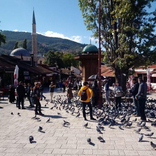 Sarajevo: Općina Stari Grad postavlja 'solarna stabla' na javnim površinama