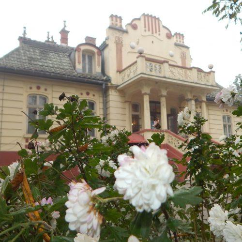 """Nacionalni spomenici: Vila """"Solvay"""" u Lukavcu"""