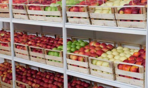 U zadruzi Eko Tvrtkovac pokrenuli proizvodnju prirodnih sokova (VIDEO)