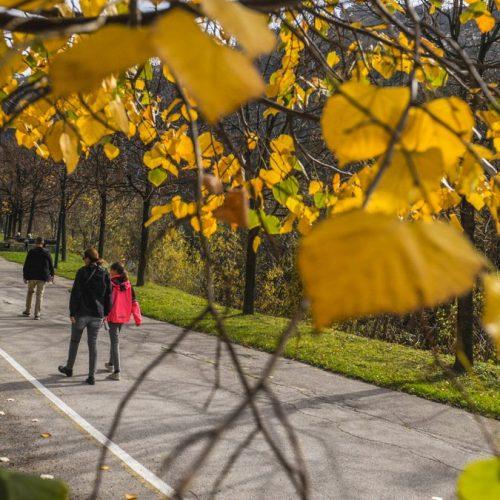 Topla jesen u Sarajevu izmamila šetače na Darivu