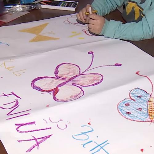 Bihać: Planiran upis u školu 200 djece migranata (Video)