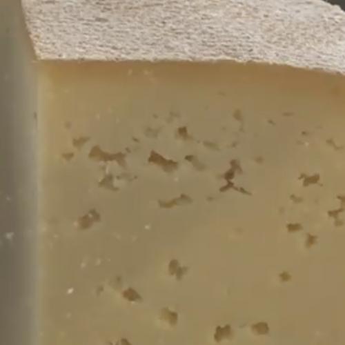 Livanjski sir bi uskoro mogao biti brendiran u Institutu za intelektualno vlasništvo