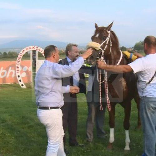 Bosna i Hercegovina počela izvoziti konje u EU
