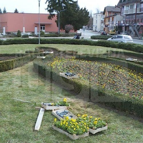 Sanski Most: Uspješan posao sa cvijećem bivšeg borca koji se vratio iz Amerike