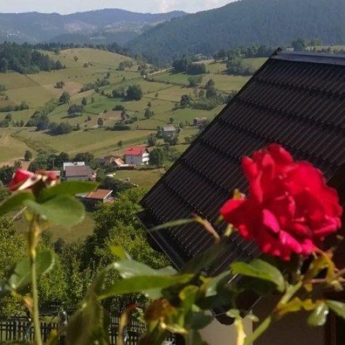Selo Budoželje – okućnice ukrašene ružičnjacima i zelenim povrtnjacima