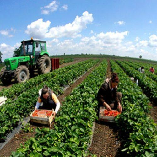 Poljoprivrednici iz čitave države žele zajedno djelovati (VIDEO)