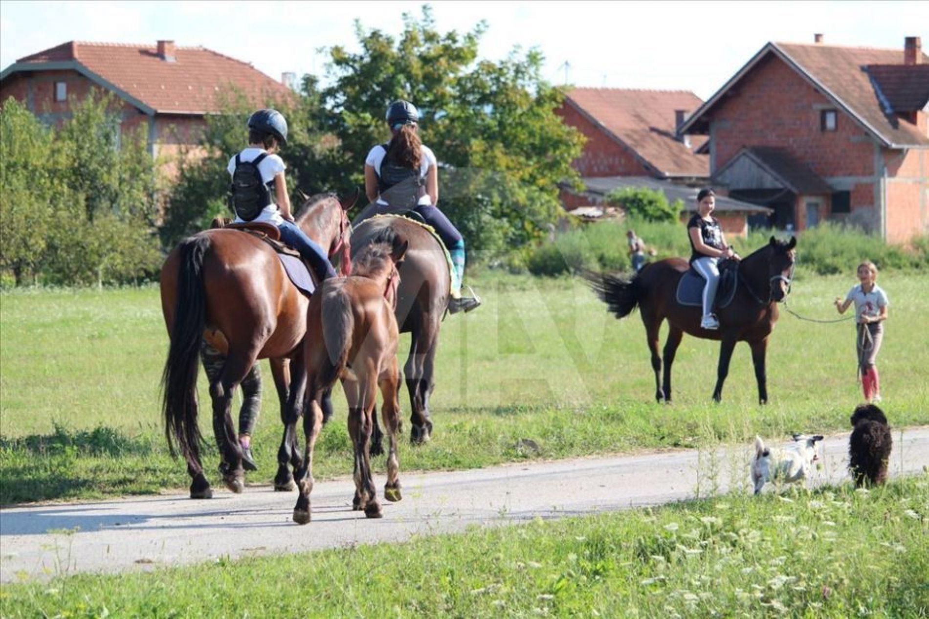 Aziz-aga Šehović: Uz konje živim svoj dječački san