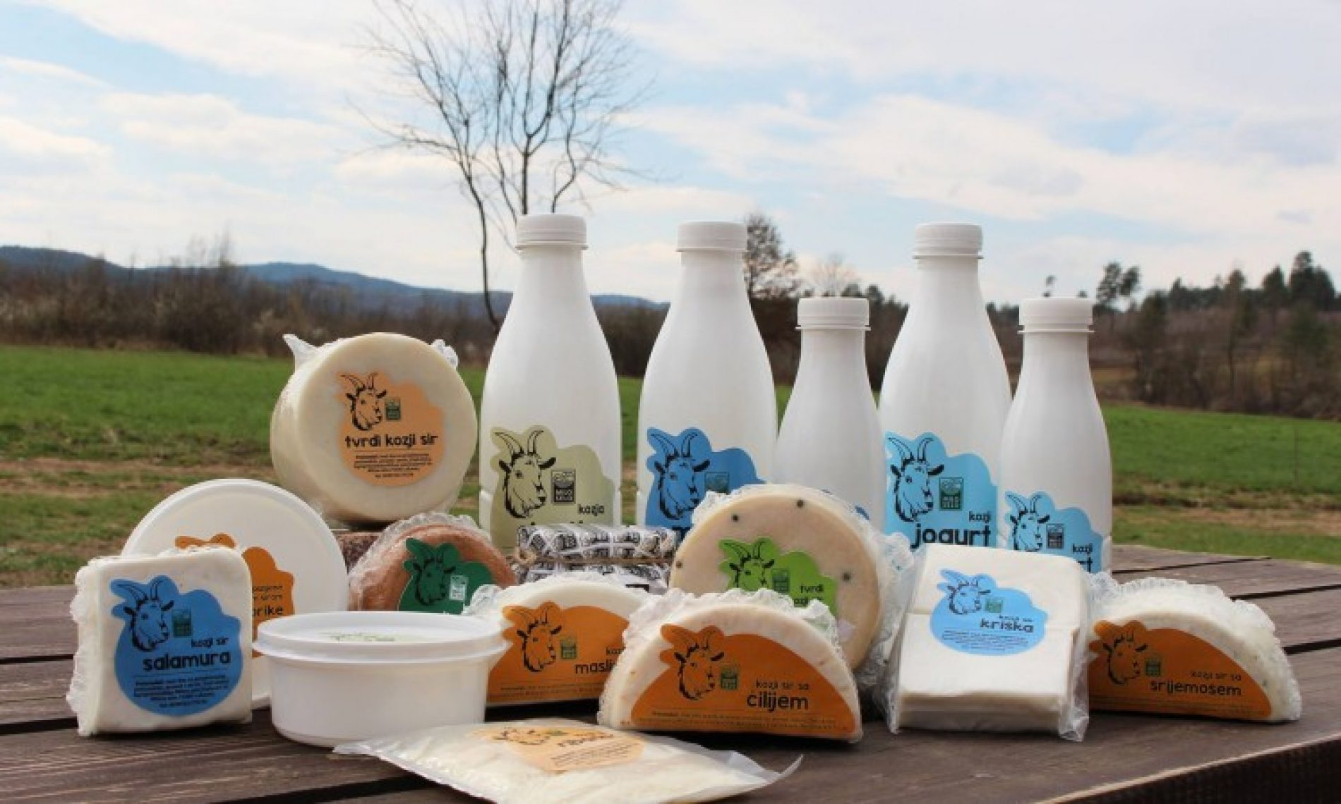 U podnožju Ozrena čuvaju tradiciju kozjeg sira