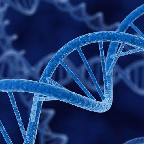 Rezultati velikog naučnog istraživanja: Ne postoji 'gej gen'!
