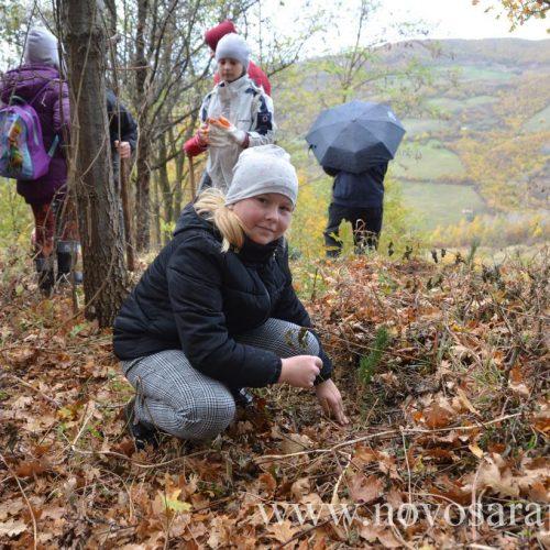Akcijom uređenja Parka-šume Hum obilježen Svjetski dan čistog vazduha
