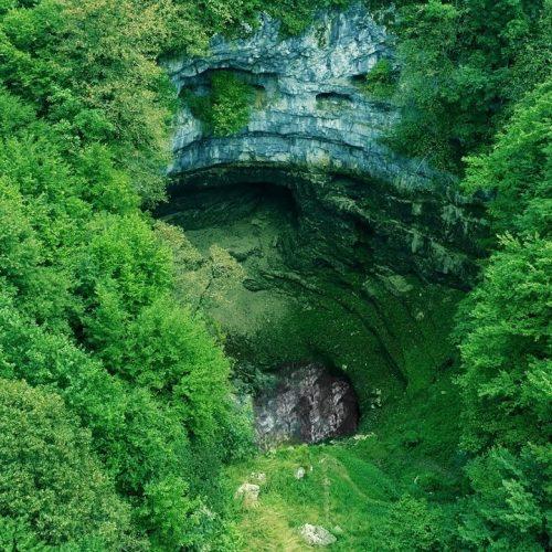 Na području USK nalaze se četiri prašume