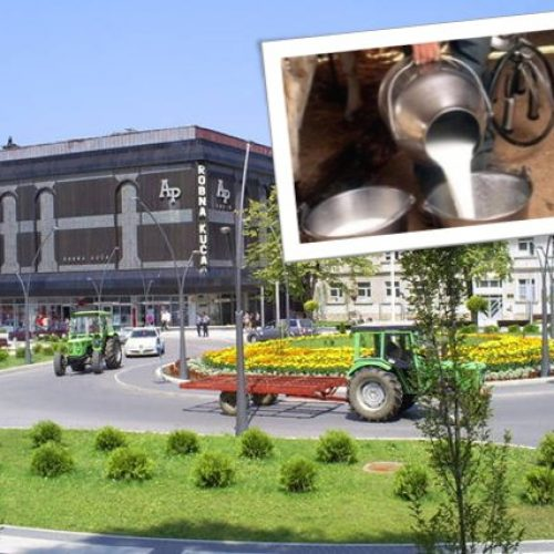 Ruše rekorde: Proizvest će 15 miliona litara mlijeka