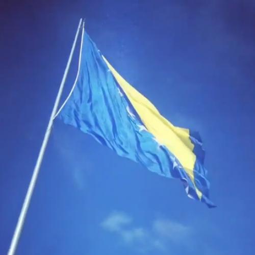Sve više Bosanaca vraća se u domovinu i pokreće biznis