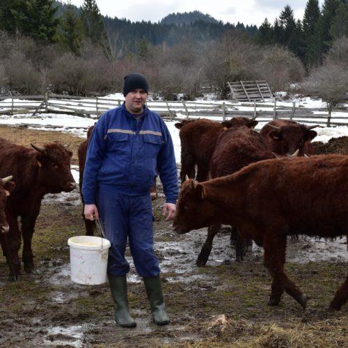 Vrijedni farmer iz Podžeplja: Koliko god da imamo, sve je unaprijed prodato