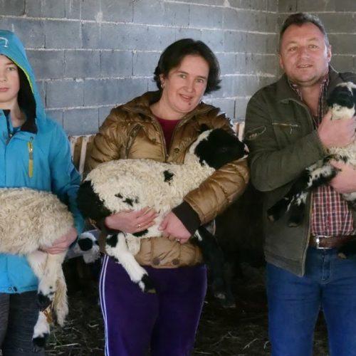 Porodica Grabus iz okoline Travnika: Godišnje prodaju čak tri tone sira i to kod kuće (Video)