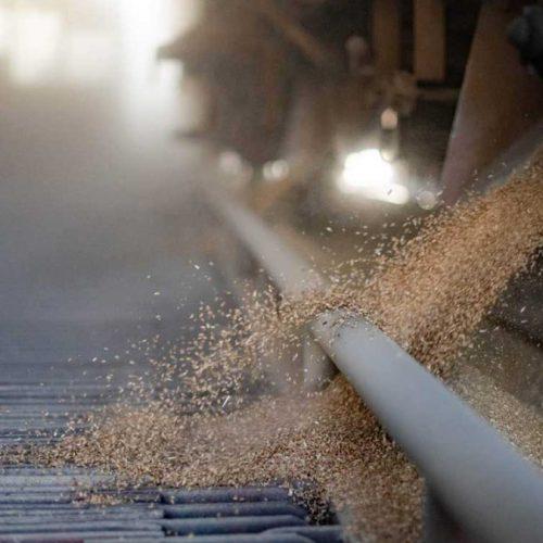 U Klas stigao teretni voz pun pšenice