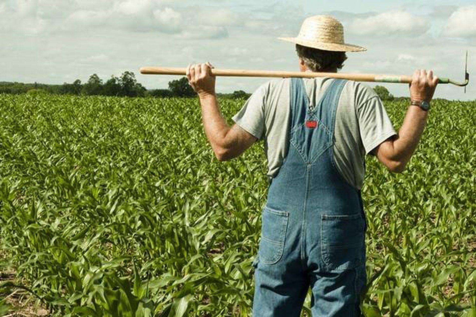 Donesena nova mjera za poljoprivredne proizvođače