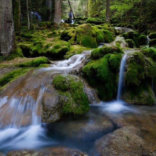 Proljeće na izvoru Miljacke, među slapovima i vodopadima
