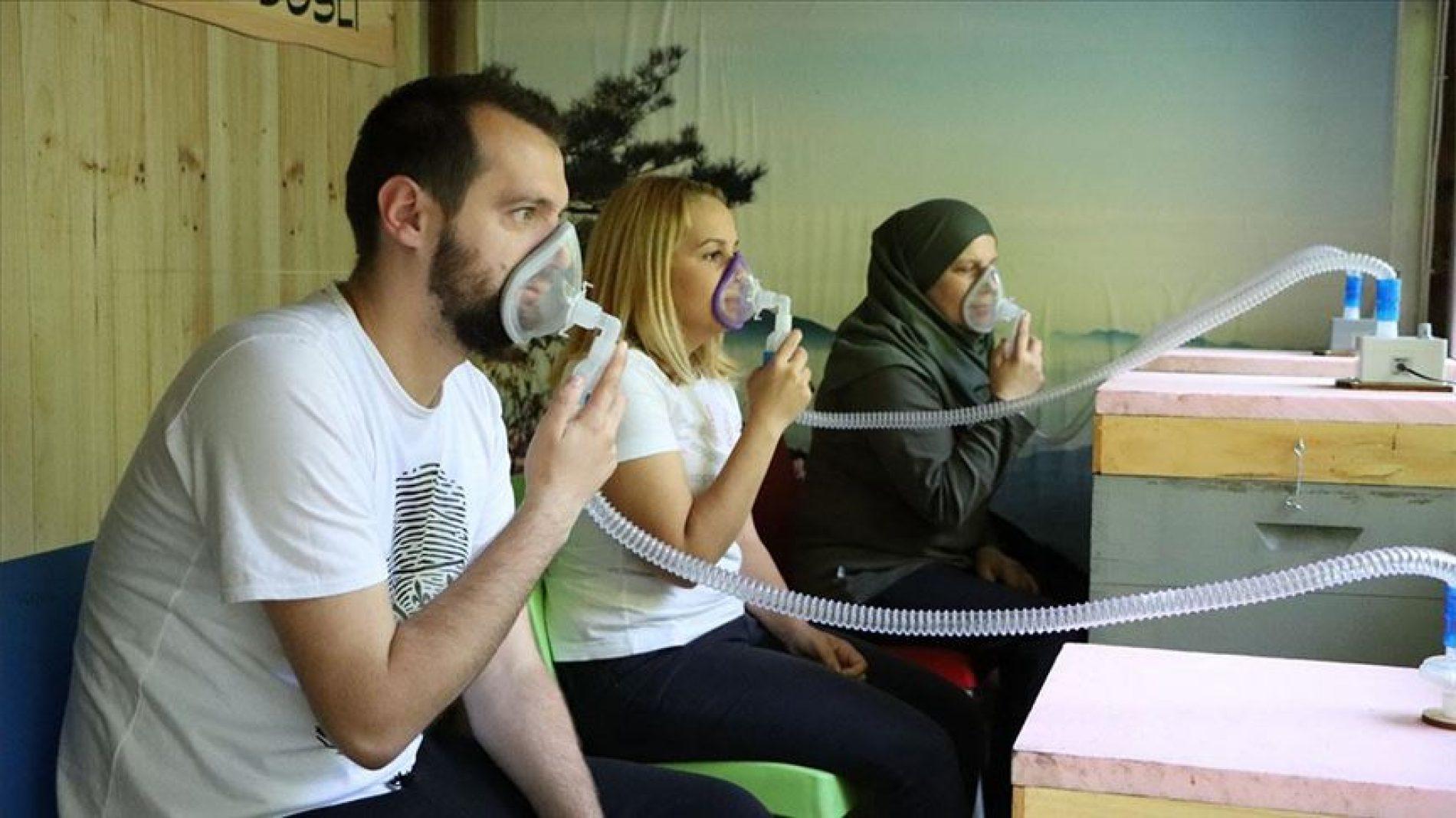 Apikomora kod Srebrenice: Zdravlje iz prirode