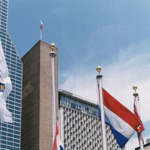 Koliko su pravno utemeljene optužbe zbog zastave s ljiljanima