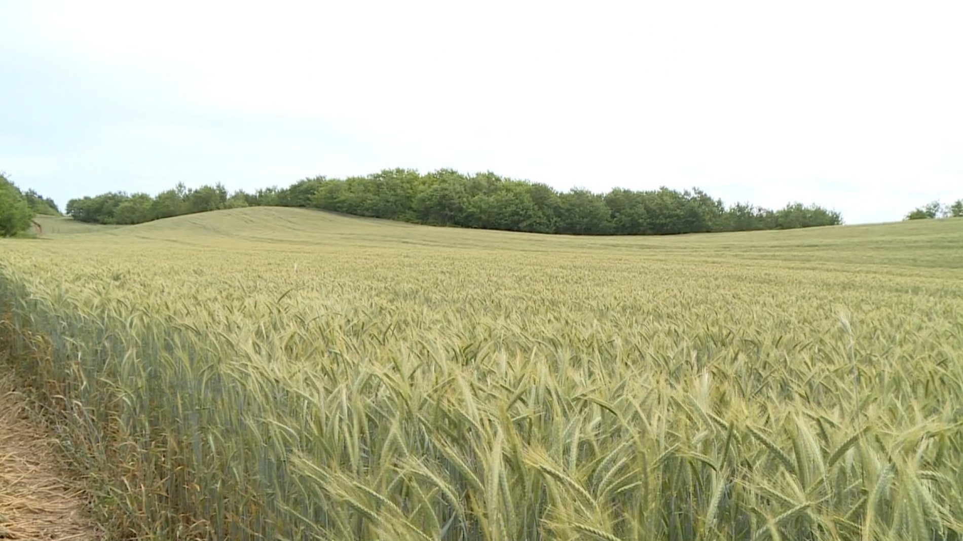"USK: Uspješna poljoprivredna priča firme ""Ermo"""