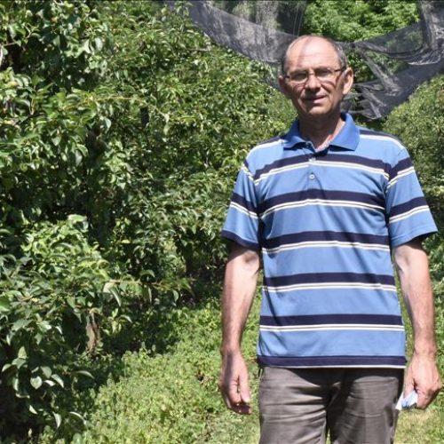 Tešanjski voćar Edib Balić ima 3.500 zasađenih voćki, najviše jabuka