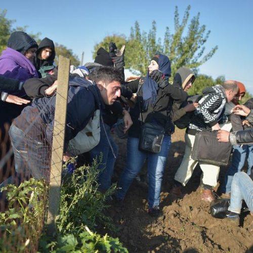 Tageszeitung: 12.000 migranata u Bihaću, Brisel i Berlin šute